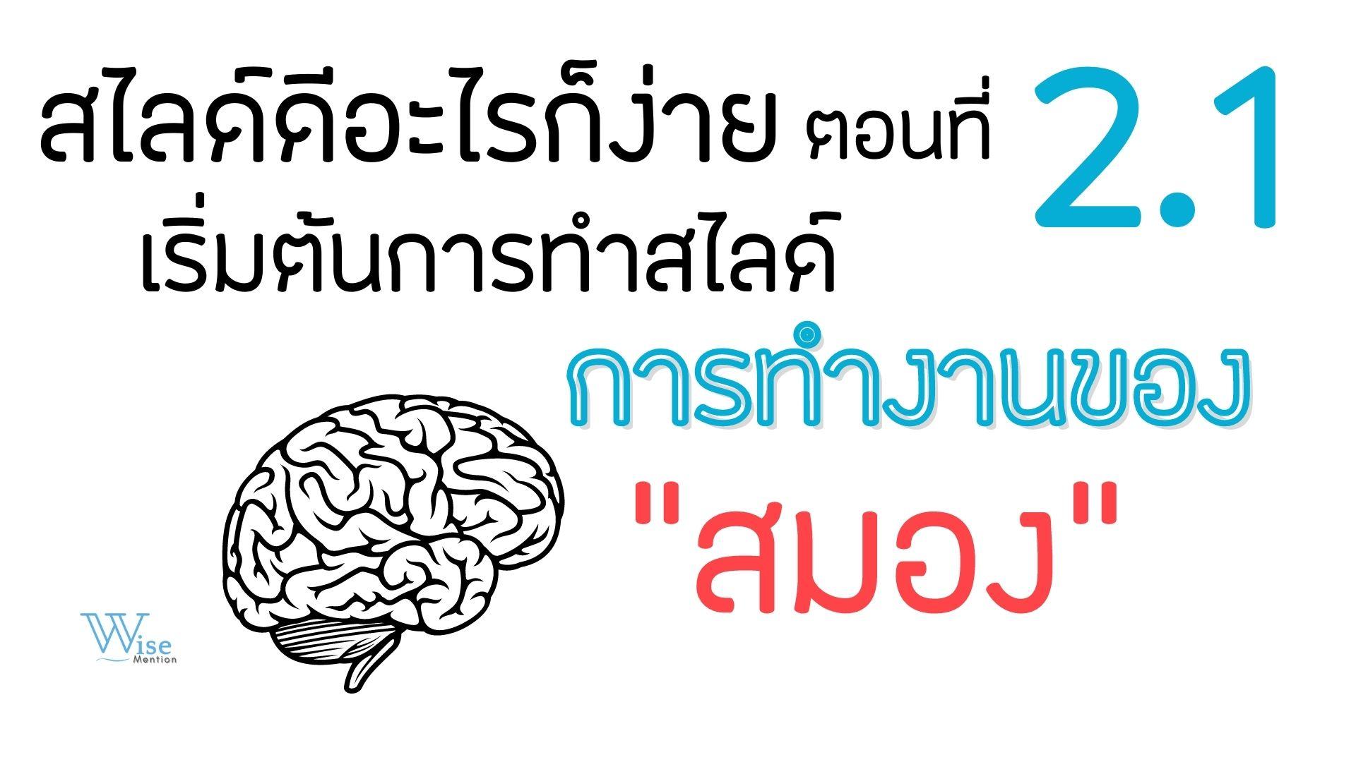 สไลด์ดีอะไรก็ง่าย: ตอนที่ 2.1 เริ่มต้นการทำสไลด์-การทำงานของสมอง